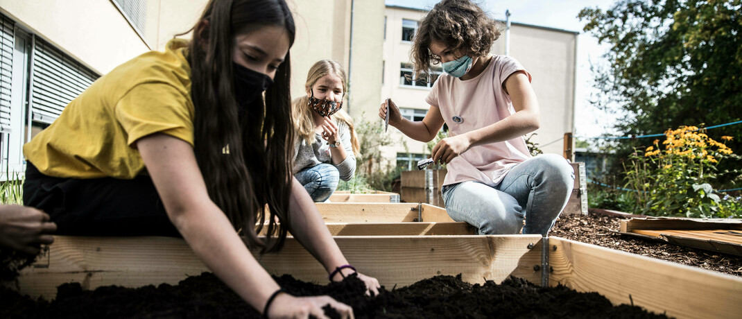 Schüler pflanzen Wildbienengarten