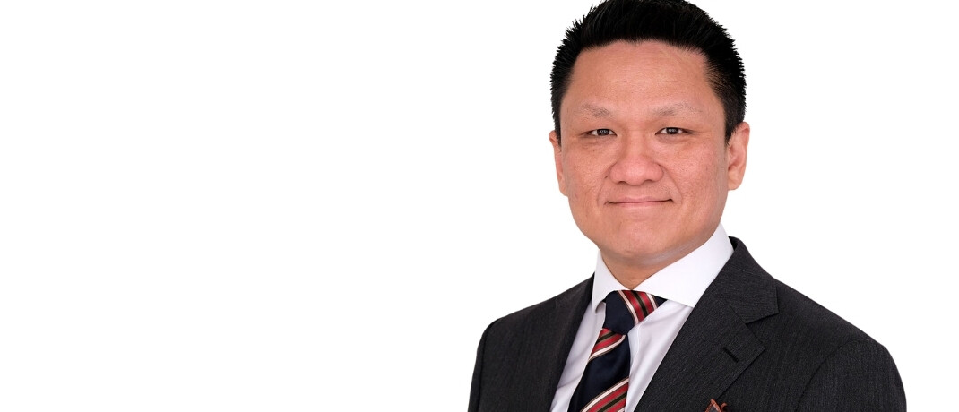 Alan Siow von Ninety One Asset Management