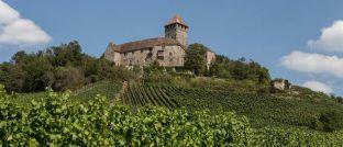 Beliebtes Ziel für Touristen in der Pfalz: Die Burg Lichtenberg in Thallichtenberg. In diesem Landkreis fielen die Mieten im Durchschnitt über zehn Jahre