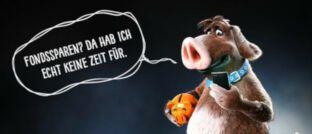 """Der """"Sparschweinehund"""", Maskottchen der neuen DWS-Kampagne zum Fondssparen."""