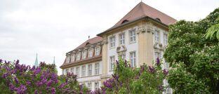 Oberlandesgericht (OLG) Naumburg.