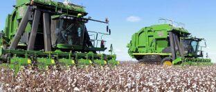 Baumwollernte in Australien: Die Senkung des Wasserverbrauchs ist für viele Unternehmen zu einem wirtschaftlichen Anliegen geworden.