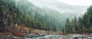 Flusslauf entlang einer kleinen Landstraße in den Bergen: Sowohl im Portfolio des AXA WF Framlington Evolving Trends als auch im AXA WF Global Factors–Sustainable Equity spielt das Thema saubere Umwelt eine wichtige Rolle