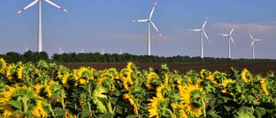 Windpark mit einer Kapazität von 150 Megawatt: Über Impact Investing können Anleger in Firmen mit einem auf Nachhaltigkeit ausgerichteten Geschäftsmodell investieren, etwa in der Energiewirtschaft.