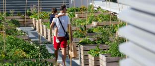 Stadtgarten auf Hochhausdach in Paris: Der Wunsch nach einer grüneren Wirtschaft beeinflusst immer mehr Branchen – das spiegelt sich auch in der Vermögensverwaltung wider.