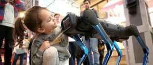 Hunde-Roboter im Supermarkt