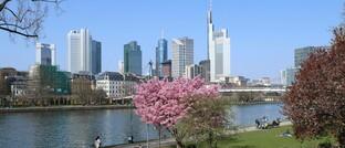 Blick auf das Frankfurter Finanzzentrum