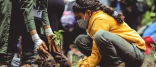 Bäume pflanzen in Äthopien