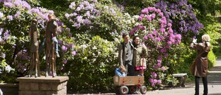 Blühender Rhododendron im Berliner Tierpark