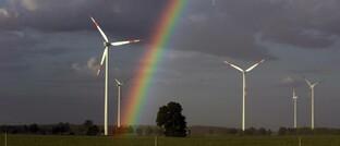 Windpark im brandenburgischen Freiwalde