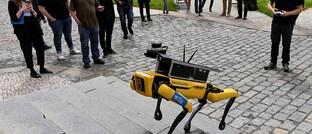Roboter Spot von Boston Dynamics
