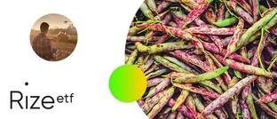 Der Investment Case für nachhaltige Lebensmittel
