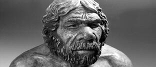 Neandertaler beherrschten fast 250.000 Jahre lang Europa