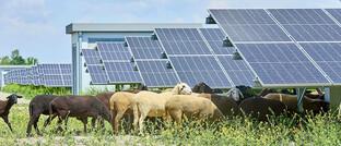 Photovoltaik-Anlage in Wien